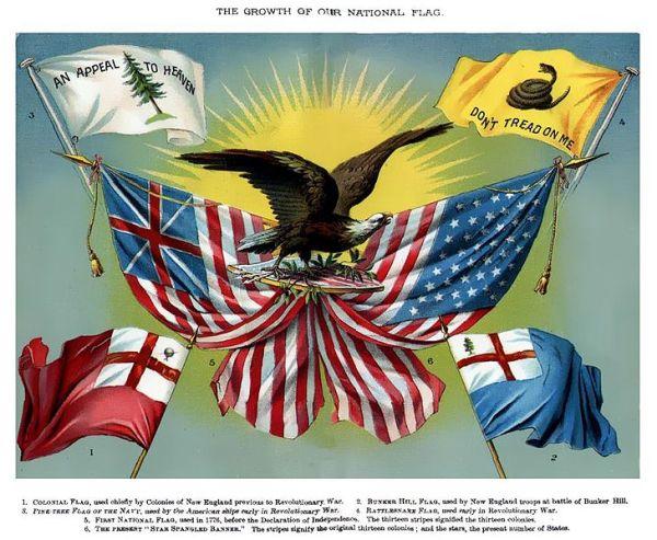 Gadsden's flag in an 1885 American school book!